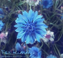 For Kimmie by Sisterslaughter165