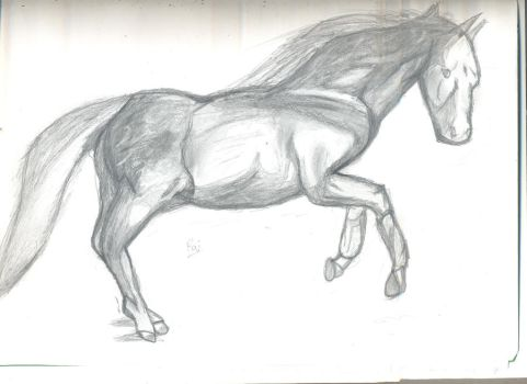 Horse Drawing by AsphyxiatedPuppet
