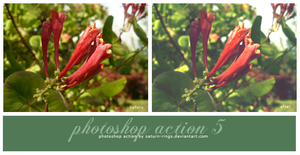 Photoshop Action 5 by saturn-rings