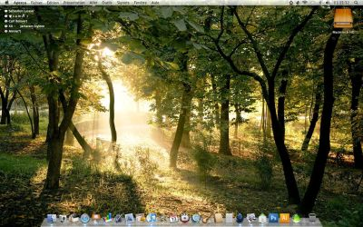 My Desktop 0809 by igabapple