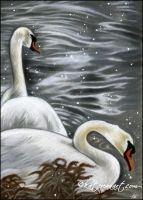 Swan Song by Katerina-Art