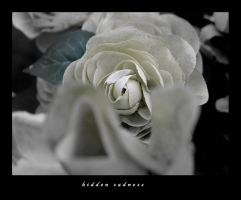 hidden sadness by miguel-deviant