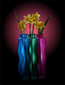 Three Vases Daffodils by toadfoto-stock