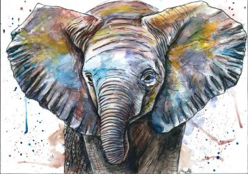 Baby Elephant by Adys-Creations