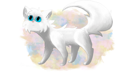 Cloudtail by ArterFoxie