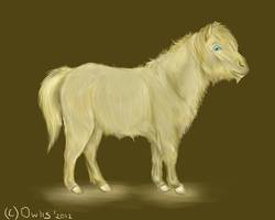 Pony of the world:) by Owlis