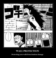 T : Fairy Tail 9 Walls by DRUNKENunicorn756