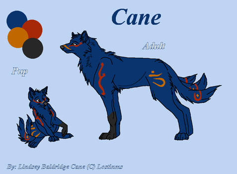 Cane for Lostinms by Tuco