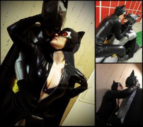 I want you now! (Catwoman+Batman) by MizuFuunakami