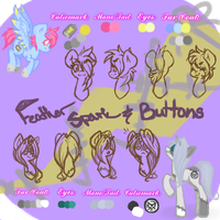 Feather Spark and Buttons Reference Sheet by Shifted-Anubis