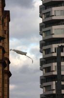 An Alien Abductor Drone Moves In On The NLA Tower by aegiandyad