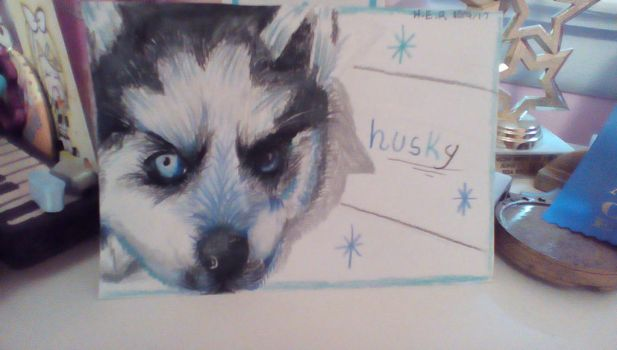 Husky Drawing! by PianoGirl110