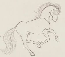 Galloping Horse by astrun