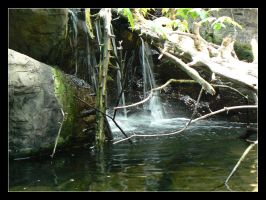 Waterfall by girlinterrupted
