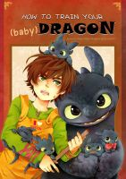 How to Train Your  baby Dragon by Kadeart0