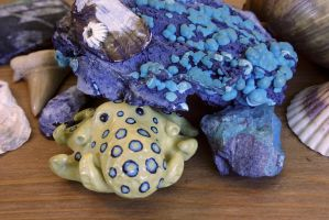 Blue Ring Octopus Hiding Under a Rock by MiniMynagerie