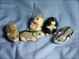 Needle Felted Dwarf Hamsters Life Size by CVDart1990