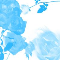 Blue Roses by alcoholicwhine