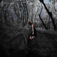 in the forest of my mind by old-timer-dev