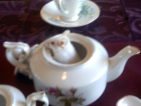 Ophelia in a Teapot by LadyVictorian
