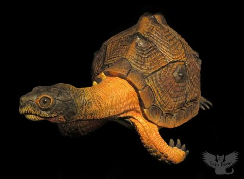 Woodrow the Wood Turtle 2 by ART-fromthe-HEART