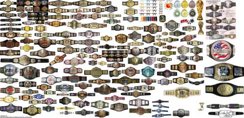 some belt champion stuff by limpbizkit9001