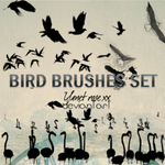 Bird brushes set by yanet-rose-xx