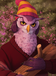 Owls are not that them seems by Zond-ER