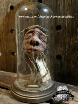 Shrunken Head Sculpture By Netherworld Oddities by lilpamely