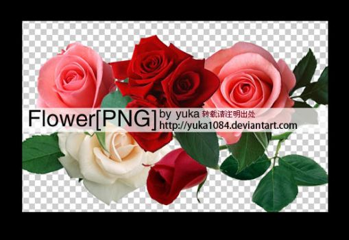 flower png by yuka1084