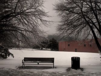city bench by LuckyStock