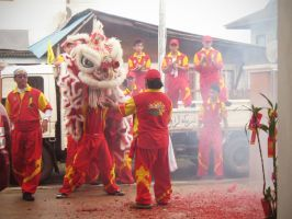 Chinese New Year 12 by hushed-words