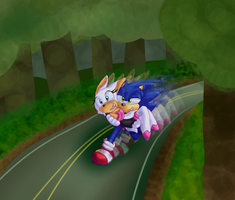 A Run Through The Forest by Metal-Echidna