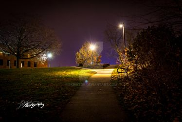 Trail Behind the art museum by SkeIator