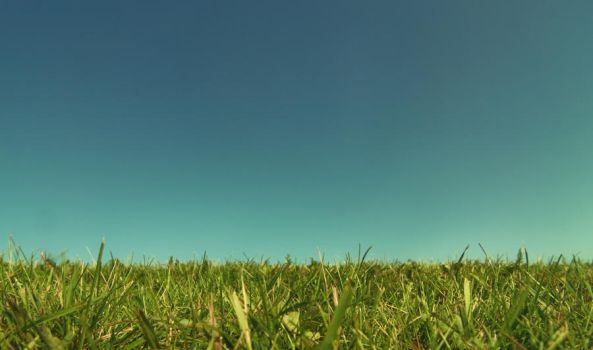 Grass and Sky by DannyRoozen