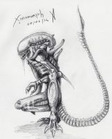 Xenomorph sketch /2 by Khanashi
