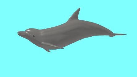 Dolphin PMX model and VMD motion DL by Hogarth-MMD