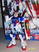 Force Impulse Gundam 1-100 HG by The-Vash