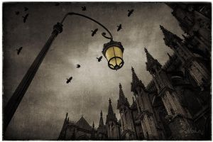 Reims Cathedral by nahojsennah