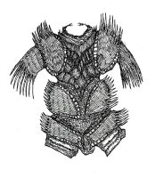 Porcupine Armor by mraston