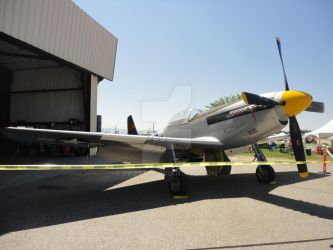 P-51-D3 by Pwesty