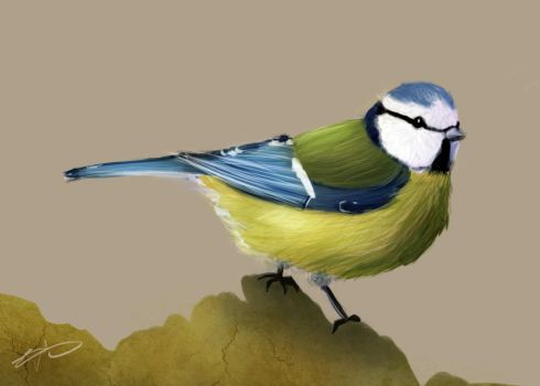 Day 3 - A blue tit by Code-hearts
