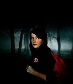 Katniss 'The Hunger Games.' by katherinemegan