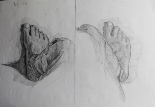 Study of the right foot by Dairanhill