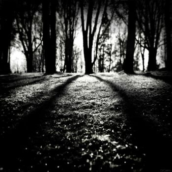 after rain, darkness came by bitterev