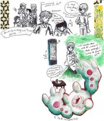 imagination, observation, quotations by sweet-suzume
