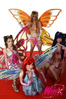 The winx club by Nerine-ayalaure