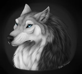 wolf portrait by mika525