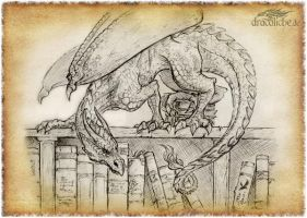 The Bookwyrm by dracolychee