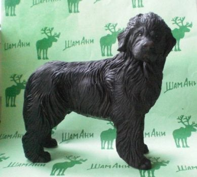 dog breed Newfoundland by ElizavetaGorojankina